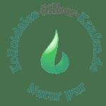 kolloidales-Silber-kaufen.de